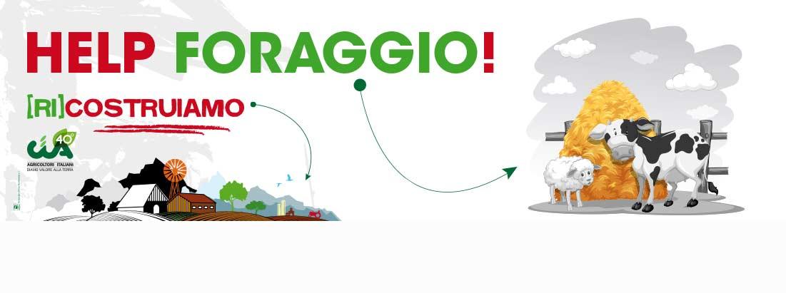 Help_foraggio_slider.jpg