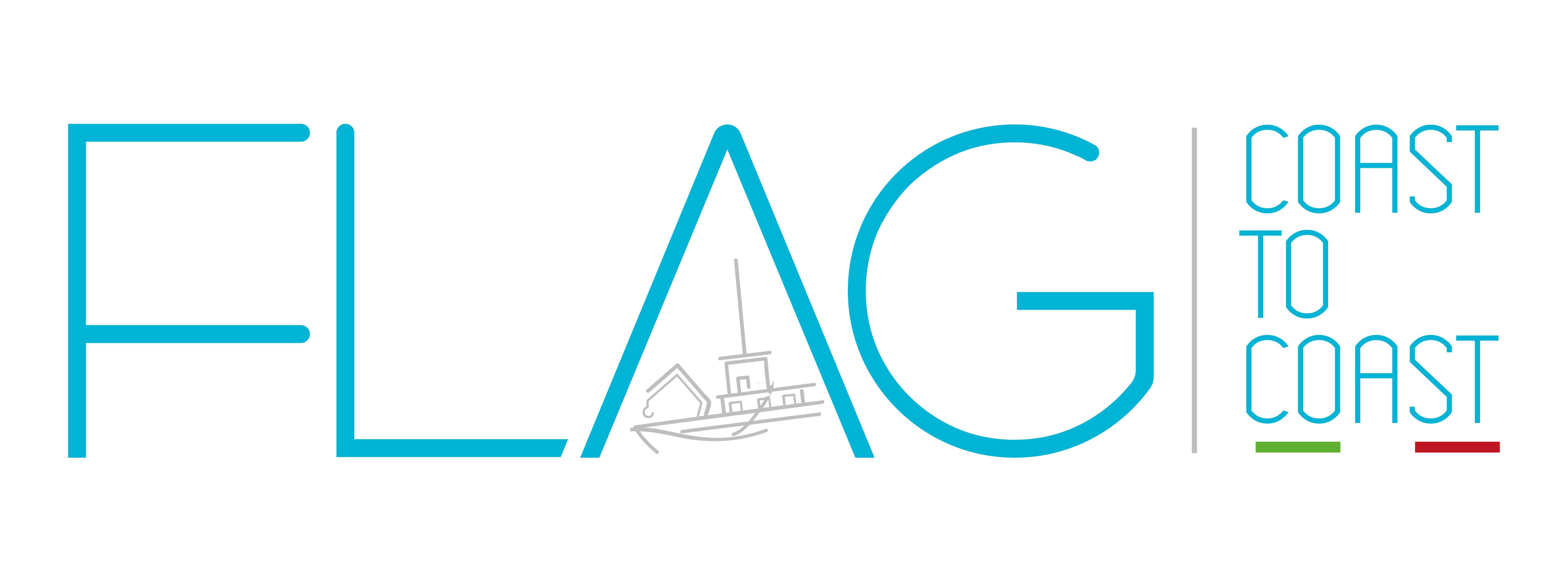 LOGO FLAG IMG