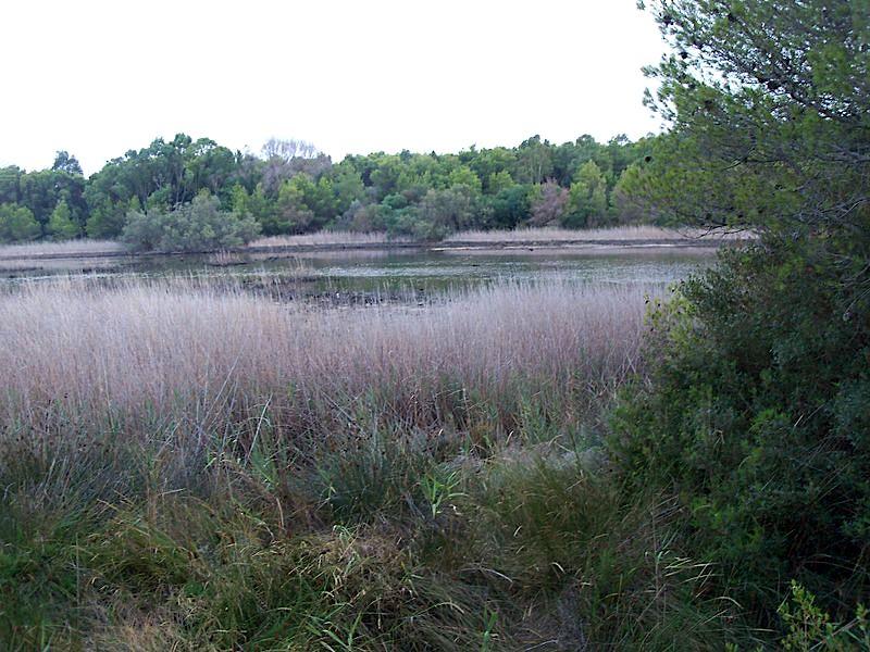 Lago_Salinella.jpg