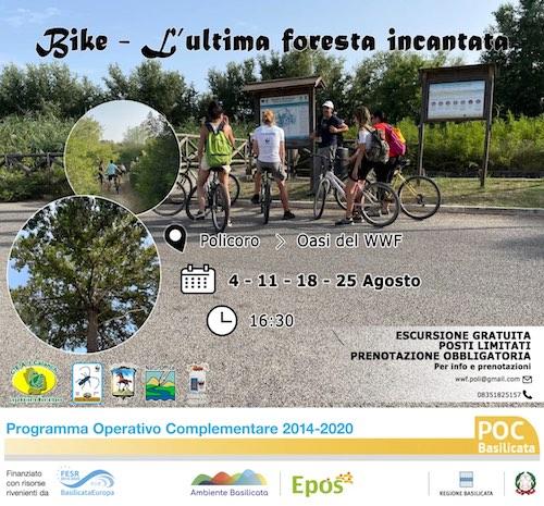 in_bike_al_bosco_pantano_di_policoro.jpg