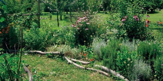 orto giardino.jpg